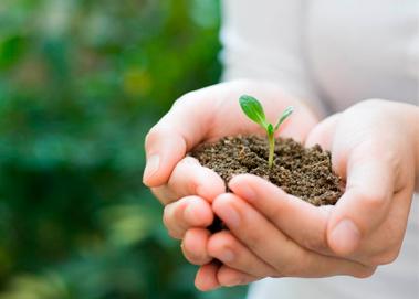 soluciones-ambientales